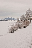 Winter at Lake HopfenseeWinter at Lake Hopfensee in Germany