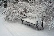 Winter, Bench